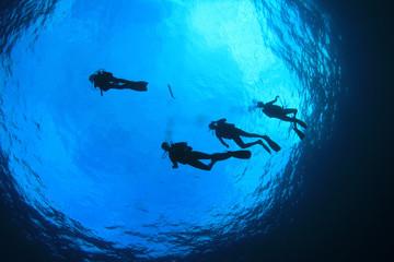 Scuba dive. Scuba divers in ocean. Scuba diving underwater