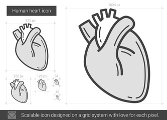 Human heart line icon.