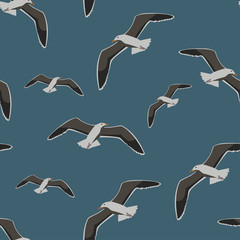 Seamless pattern sea gull, vector