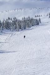 Winter in Carpathians Mountains. Ukraine. Sunny day. Deep snow. Alpine skiing on piste.