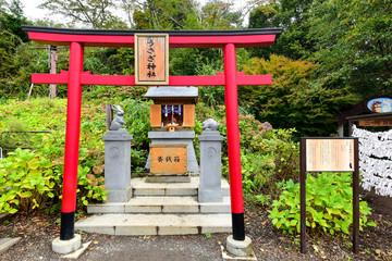 Obraz KAWAGUCHIKO, JAPAN - OCTOBER 09 : Usagi Shrine at kachi kachi ro - fototapety do salonu