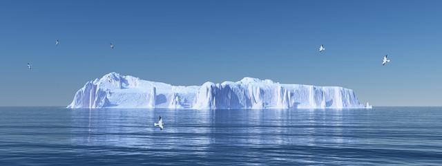 Eisberg und Seemöwen