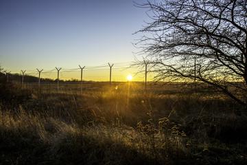 Stacheldrahtzaun im winterlichen Sonnenuntergang
