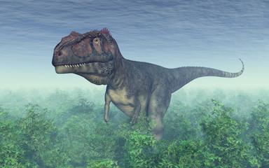 Dinosaur Mapusaurus