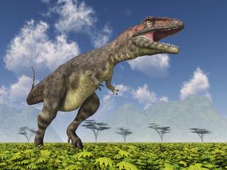Dinosaurier Mapusaurus