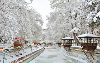 Karlar Altında Gizli Cennet