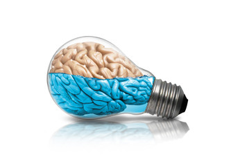 Brain Lamp Idea