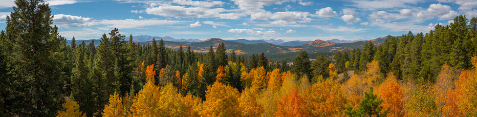 Colorful Tree Top Panorama Near Rocky Mountains National Park