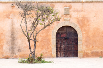 Africa,Morocco,Marrakech. Moroccan architecture  includes  open court yards with gardens, U-shaped entries and large domes.