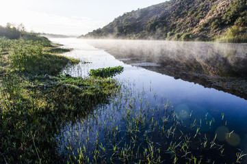 Breede River at Dawn in the Bontebok National Park