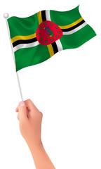 ドミニカ  国旗 手 アイコン