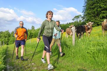 Fototapete - Fit durch Nordic Walking