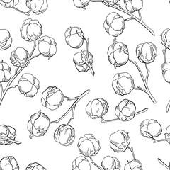 Cotton plant graphic black white seamless pattern sketch illustration vector