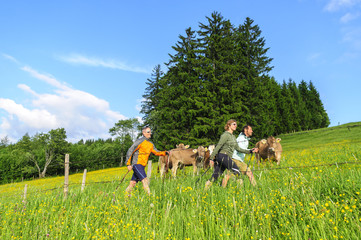 Fototapete - Fit durch Nordic Walking im Grünen