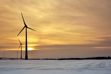 Windmills for electric power production. Winter landscape at sunset time. Poland.
