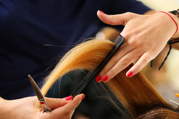 Female hairdresser hold in hand between fingers lock of blonde h