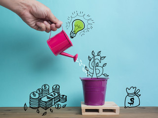 Growing Money Trees A business hand  watering money trees over color  background. Business person watering money tree.Drawing free hand sketch tree money.Money Growth concept.