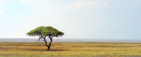 Zelfklevend Fotobehang Afrika african landscape