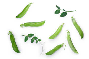 Pea pods and leaves (Pisum Sativum), paths