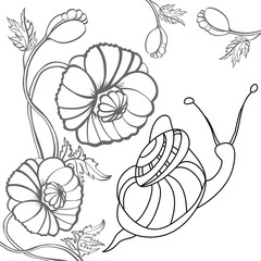Snail and poppy. Black-and-white illustration.