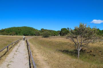 Wandern, Rügen, Naturschutzgebiet, Kreptitzer Heide