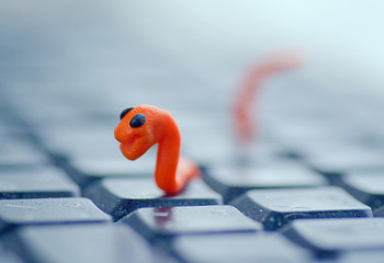 Plasticine Worm Virus on The Keyboard