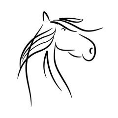 horse as a vector