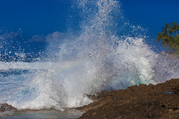 Sea waves crashing against the rocks at tropical beach with palm trees in pacific island. Ocean water with reflected rainbow on foam of powerful white droplets.