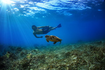 Freediving with wild marine animals. Sea turtle floating underwater. A male snorkeler with glossy mask watching behind