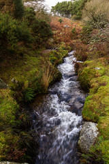 Devonport Leat, old channel carrying water, Dartmoor England.