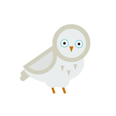 Owl bird cartoon vector