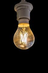 beautiful light lamp on black background