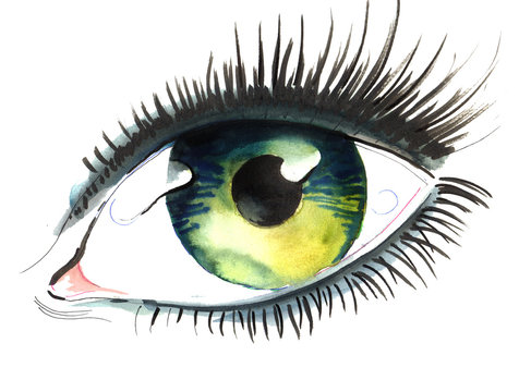 Green eye with long lashes