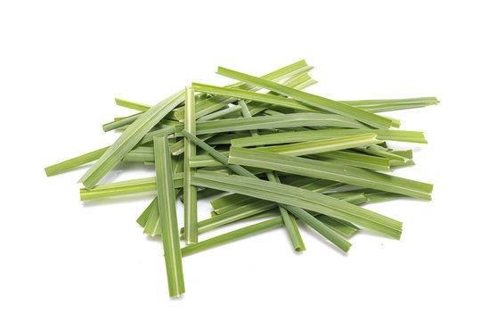 Green Lemongrass or citronella grass leaf. Studio shot isolated