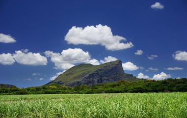 Corps de Garde Mountain Mauritius