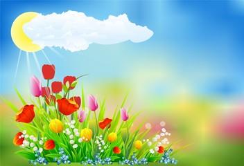 wiosenna dekoracja z tulipanami
