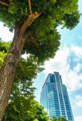 concept image of grren environment and advancement city