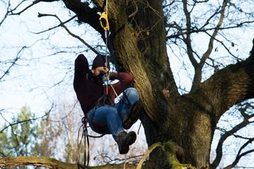 Klettergurt Für Baumfällung : Bilder und videos suchen: baumklettern