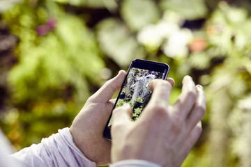 Closeup view man's hands using a mobile phone, taking photo of trees flowers and scaling on screen
