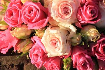 Mixed pink roses