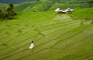 Bride with white wedding dress in paddy field in Chiang Mai, Thailand