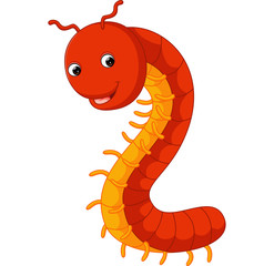 cute millipede cartoon