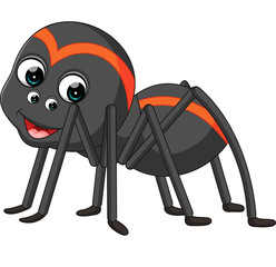 Cartoon spider tarantula