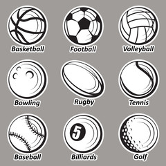 monochrome collection of various sport balls