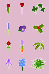 Flowers and plants - vector set