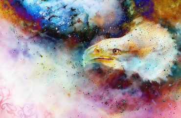 collage with eagle head and ornaments on multicolor abstract background.