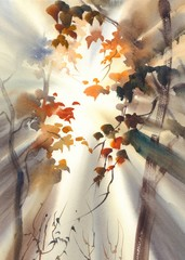 sun rays in the forest watercolor
