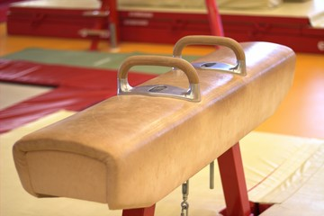 Gymnastic equipment