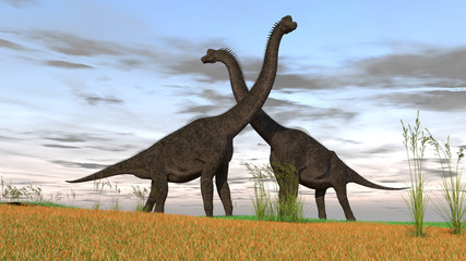 3d illustration of the gigant brachiosaurus