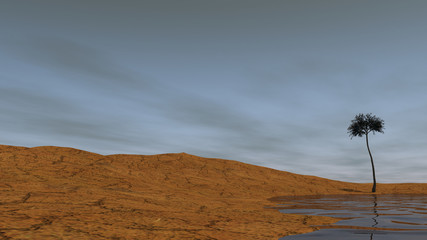 3d illustration of the desert shore landsxape with araucaria tree